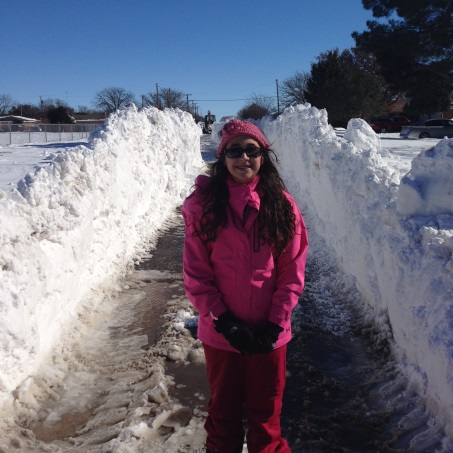 del hickory st snow