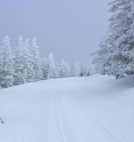 ski apache jan 2015